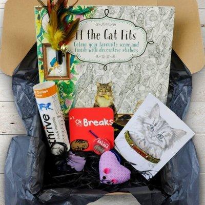 cat subscription box june 2019