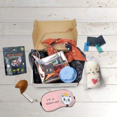 monthly cat box november cat box